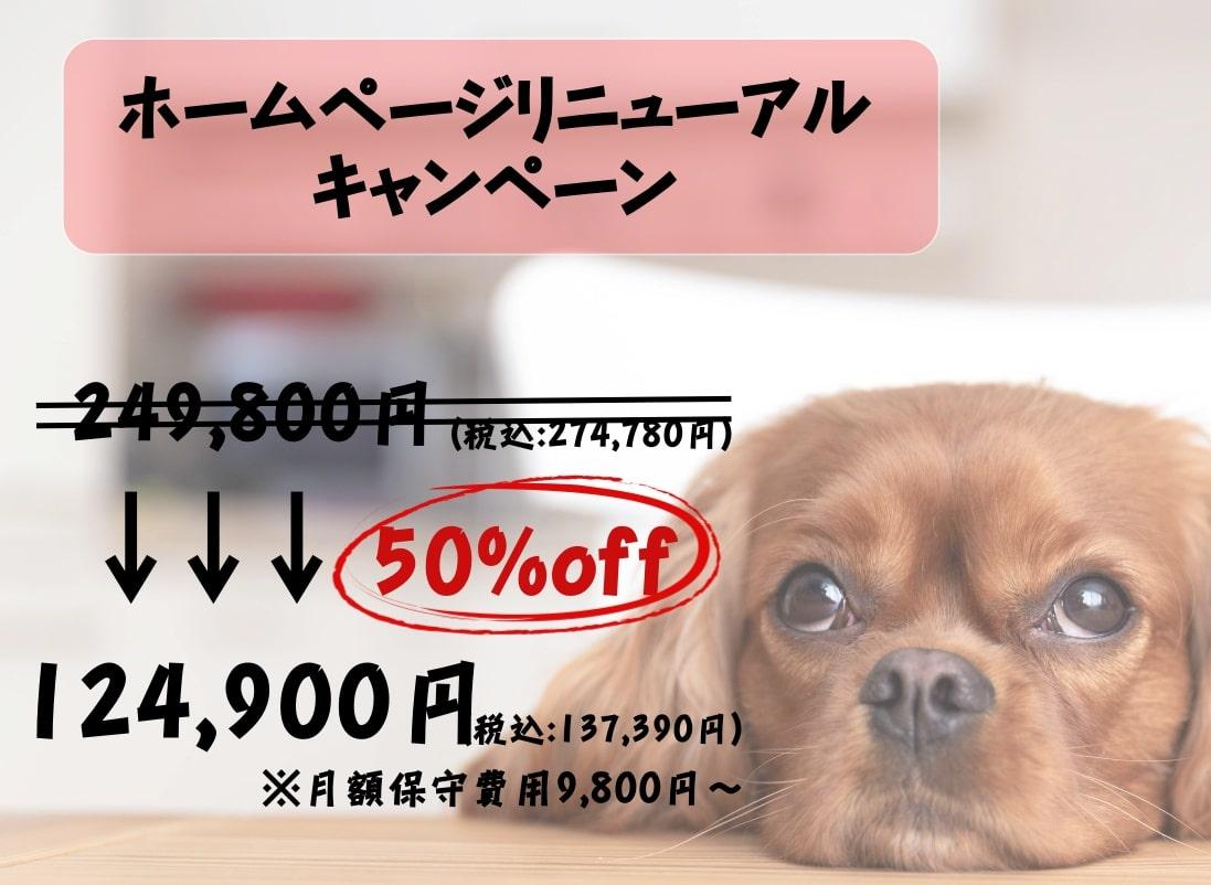 ウィズ一歩リニューアル作成キャンペーン